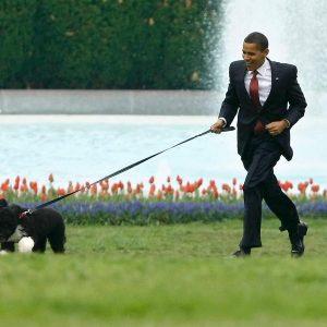president-barack-obama-with-bo
