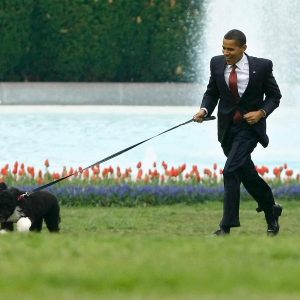 president-barack-obama-with-bo