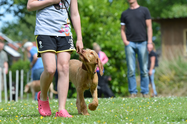 dog-training-for-children-by-ian-dunbar-james-kenneth