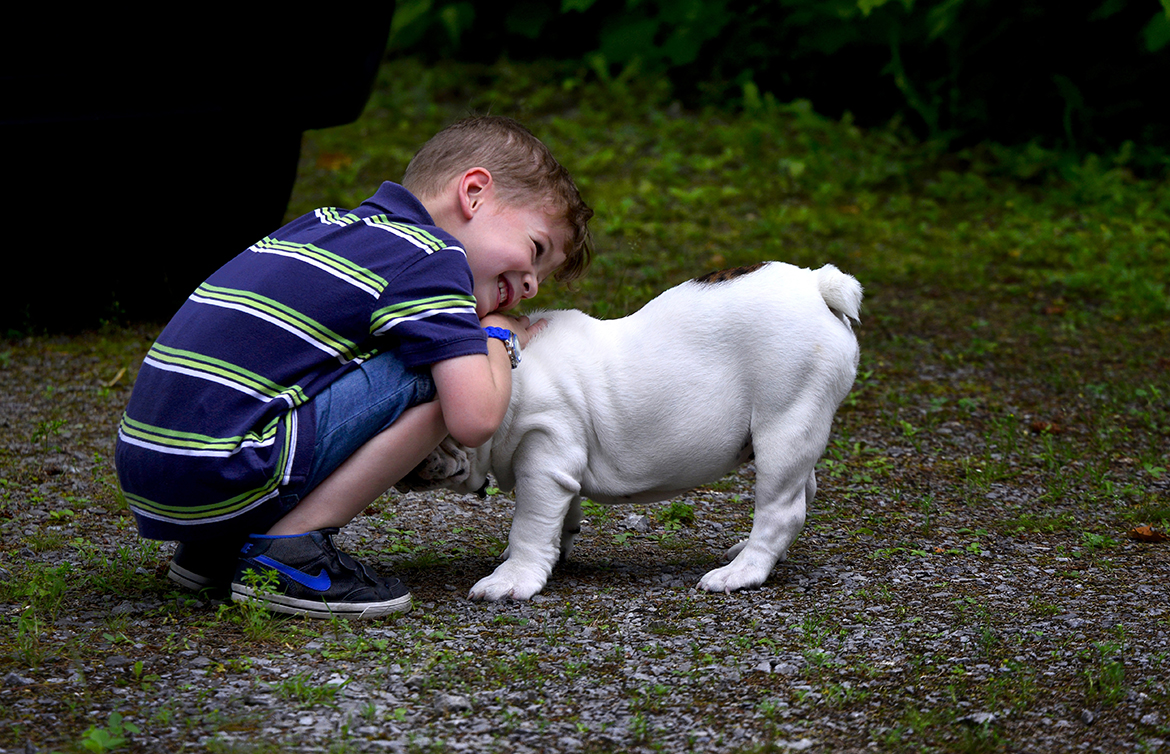 good-dog-kids-teach-kids-about-dog-behavior-and-training-by-evelyn-pang-hilary-louie