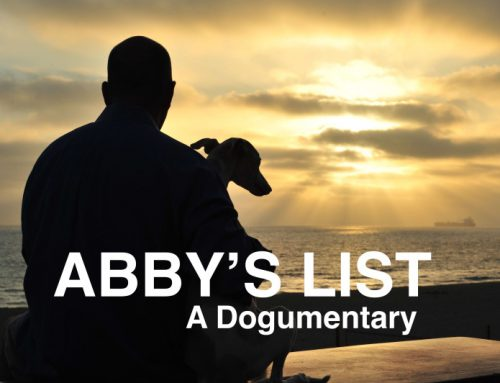 Abby's List: A Dogumentary