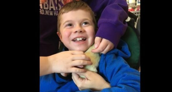 Liam and Fenway: A Special-Needs Child and His New Friend